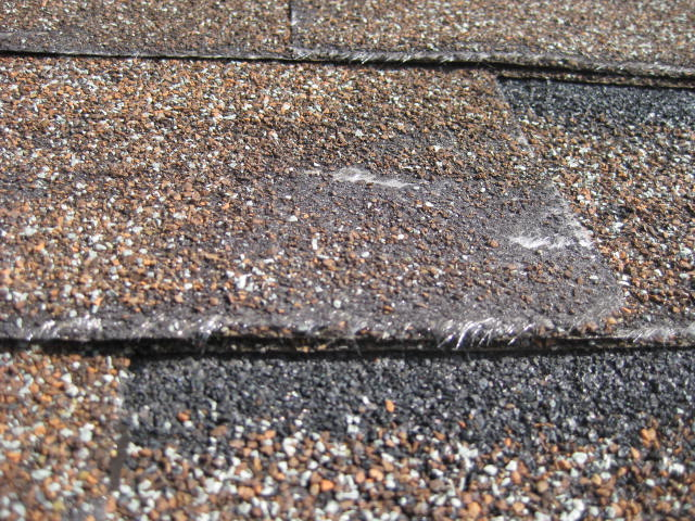 portland roof repairs, shingle damage, brushing roof, portland moss removal, hillsboro moss removal, beaverton moss removal