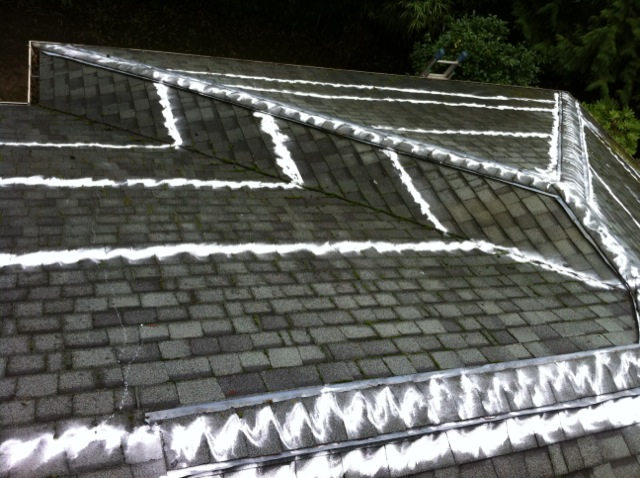 Superior Removing Moss On Roofs